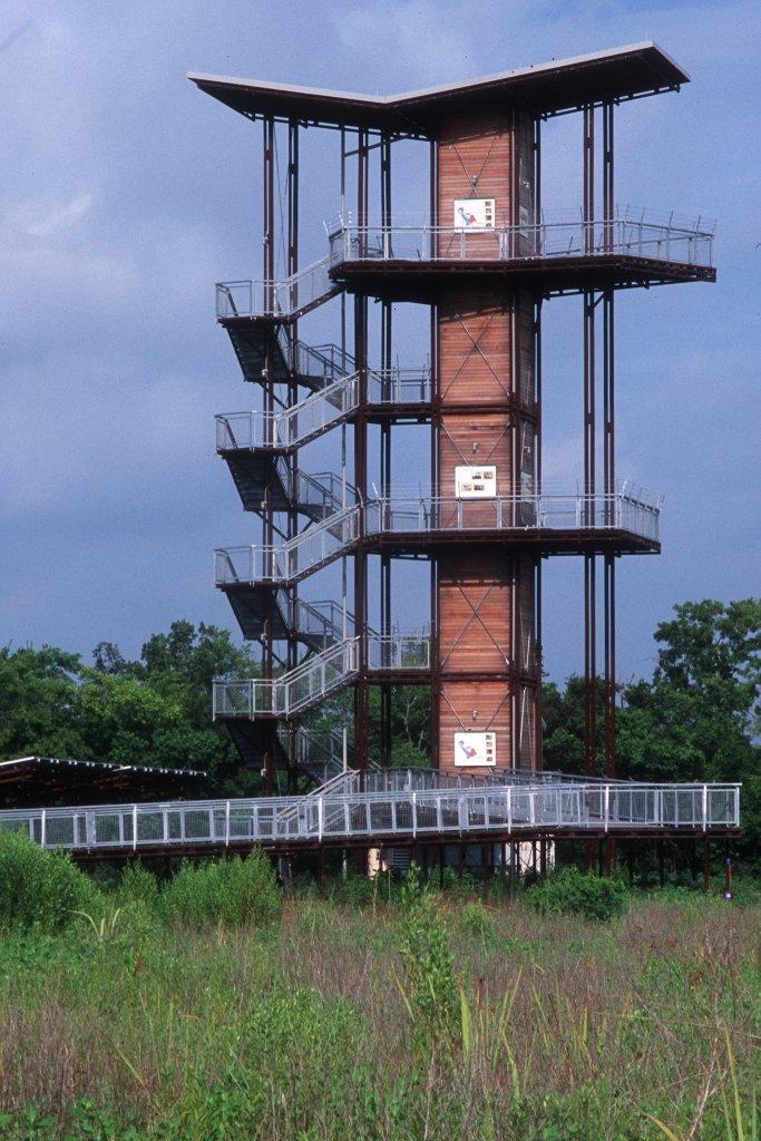 1352-sheldon_lake_state_park_observation_tower